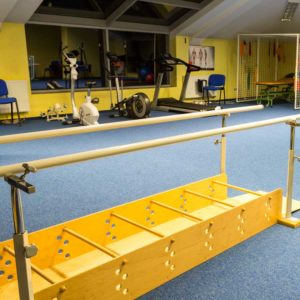 gym equipment that might be used to help ms sufferers